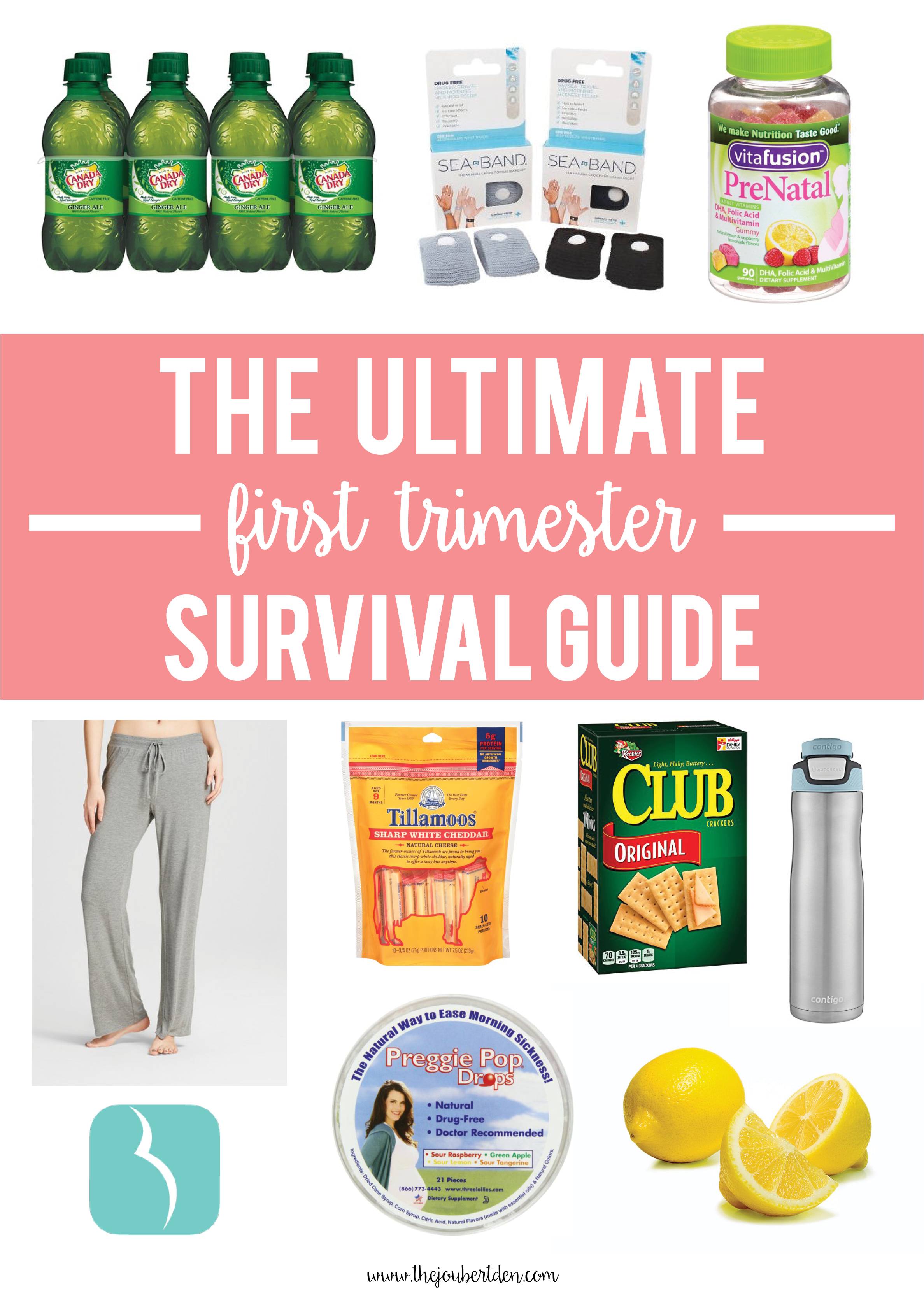 the ultimate first trimester survival guide  the joubert den